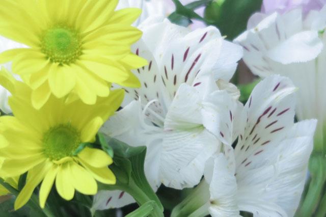 葬儀の意味と役割について